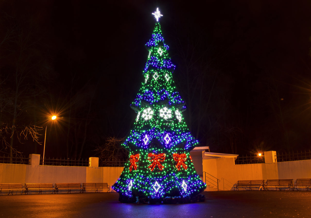 Kramatorsk. High-altitude spruce. — Lumiere | Light illumination | Ukraine