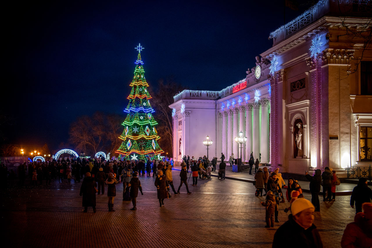 Odessa. The main tree. — Lumiere | Light illumination | Ukraine
